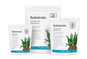 substrate2